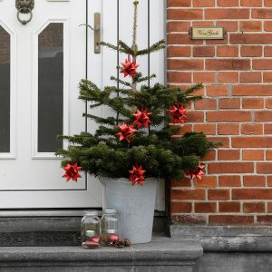 Slik lager du en flettet julestjerne - og 7 andre idéer med stjernestrimler