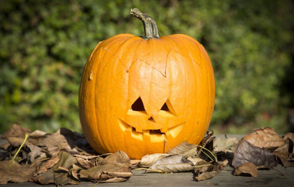 Kreativ halloween lag selv gresskarlykter med gresskar utskjæring