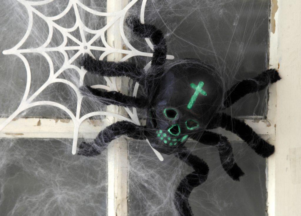 Kreativ halloween lag selv pynt med edderkopp